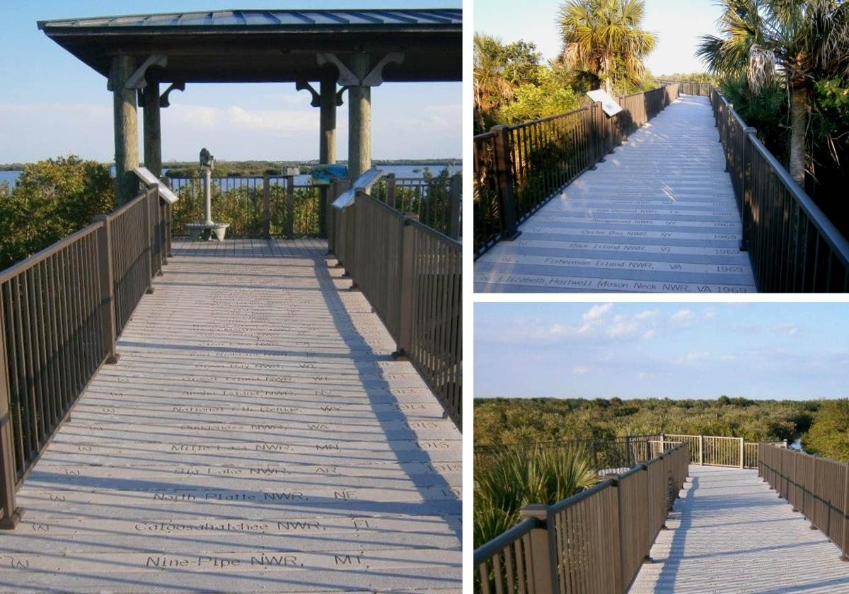 Centennial Trail Boardwalk Renovation